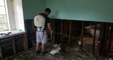 Sanitize and Dry Out Your Home Before Rebuilding After a Flood