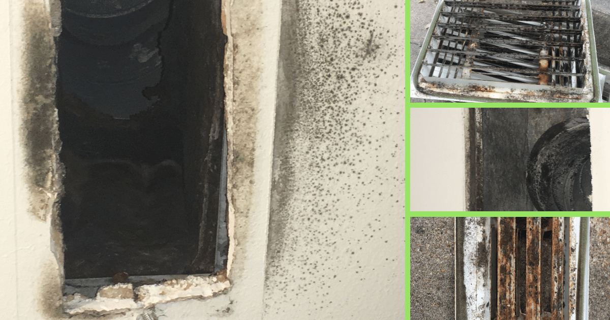 How To Clean Mold From A C Vents 187 Green Star Eco Services