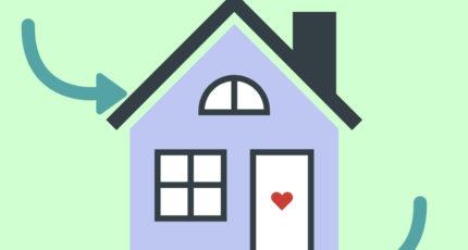Crawlspace & Attic Mold Can Spread Unnoticed in a Home